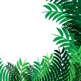Wit ruimte en groen van de bladeren vector abstract aard ontwerp als achtergrond vector illustratie