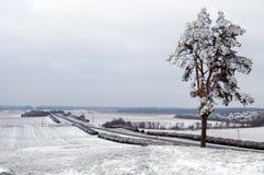 Wit-Rusland, de winterlandschap Stock Fotografie
