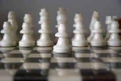 Wit schaak Stock Afbeeldingen