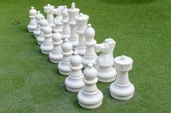 Wit schaak Stock Foto's