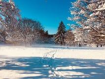 Wit Sneeuwstof royalty-vrije stock afbeeldingen