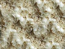 Wit van de anjerbloem abstract geweven metaalontwerp als achtergrond, illustratie stock foto's