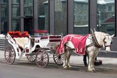 Wit vervoer met wit paard in rode die laag in Oud Montreal wordt geparkeerd royalty-vrije stock afbeelding