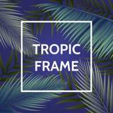 Wit vierkant kader met palmbladen op achtergrond Donkere lilac achtergrond In tropische illustratie voor uw seizoen Royalty-vrije Stock Afbeeldingen