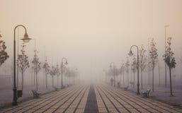 Świt w mgle Fotografia Stock