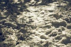 Wit Winters Sprookjesland Stock Afbeelding