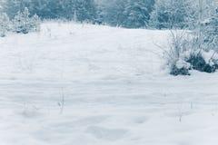 Wit Winters Sprookjesland Royalty-vrije Stock Foto's