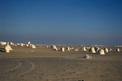 Wit woestijnlandschap. Stock Foto
