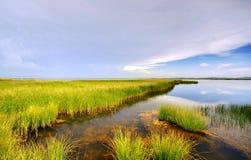 Wit wolken en moerasland Royalty-vrije Stock Foto's