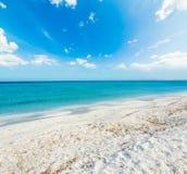 Wit zand in Stintino-kust royalty-vrije stock afbeelding