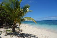 Wit zand tropisch strand stock foto's