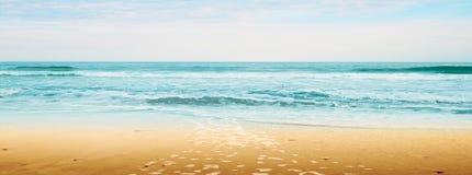 Wit zandig tropisch strand stock afbeeldingen