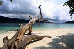 Wit zandstrand in het Eiland van Adang Rawi, het Nationale Park van Tarutao Stock Fotografie