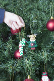 Święta dekoruje drzewa Zdjęcie Royalty Free