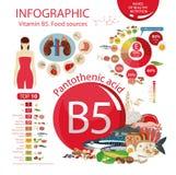 Witaminy B5 Pantothenic kwas: wierzchołka 10 naturalny organicznie Obrazy Stock