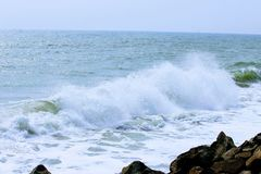 Witaminy morze | PLAŻA | Varkala plaża | Kerala | God& x27; s posiada kraju obraz royalty free