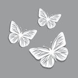 Witboekvlinders op grijze achtergrond stock illustratie