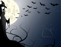 Witch. Halloween Witch in the moonlight Royalty Free Stock Photo