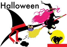Witch. Vector color graphic depicting a witch on her broom (concept: Halloween Royalty Free Stock Images