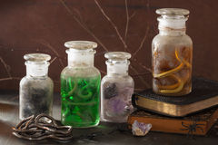 Witch apothecary jars magic potions halloween decoration Stock Images