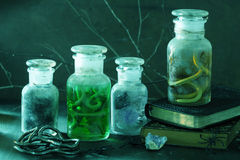 Witch apothecary jars magic potions halloween decoration royalty free stock photos
