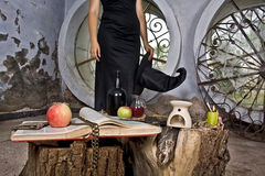 Witch Attributes. Witch prepared attributes for her witchcraft Stock Image