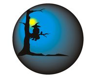 Witch in ball. Witch sedentary on bough with cat Stock Photography
