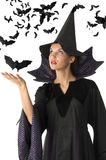 Witch and bat royalty free stock images