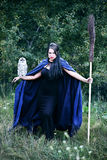 Witch with a bird in the forest. Young beautiful witch in the hood with an owl Royalty Free Stock Image