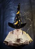 Witch with book and spider Stock Image