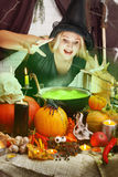 Witch brews a green brew. Beautiful Witch brew the potion in the boiler stock images