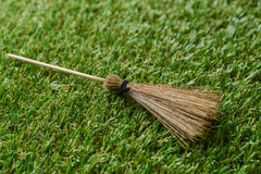 Witch broom Stock Image