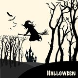 Witch on a broom in the holiday of Halloween Royalty Free Stock Photos