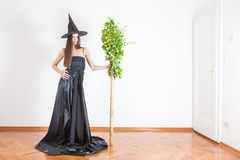 Witch with broomstic Royalty Free Stock Photography
