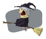 Witch in broomstick. A witch in a broomstick stock illustration