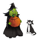 Witch, cat, pumpkin Royalty Free Stock Photo