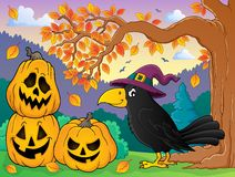 Witch crow theme image 3 Royalty Free Stock Image