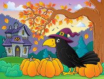 Witch crow theme image 4 Royalty Free Stock Image