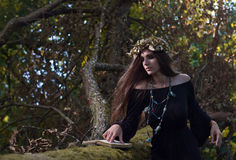 Witch in dark forest Royalty Free Stock Images