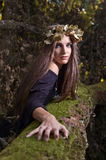 Witch in dark forest Stock Photography