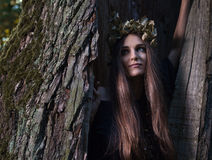 Witch in dark forest Royalty Free Stock Photo