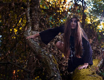 Witch in dark forest Stock Photos
