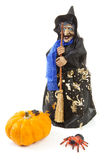 Witch doll for halloween with pumpkin and spider. Over white background Stock Photo