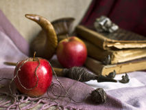 The witch enchanted apples Royalty Free Stock Photo