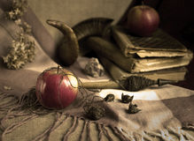 The witch enchanted apples Stock Image