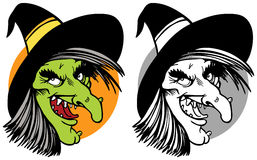 Witch face collage Stock Image