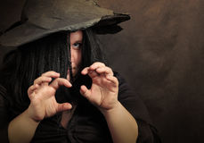 The Witch. Royalty Free Stock Photos