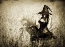 Witch in the field. Pretty funny witch sitting in the field Stock Images