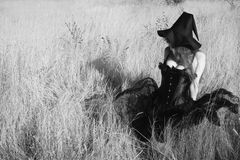 Witch in the field Royalty Free Stock Images