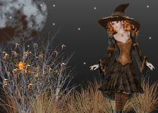Witch in Field at Night Background Stock Images